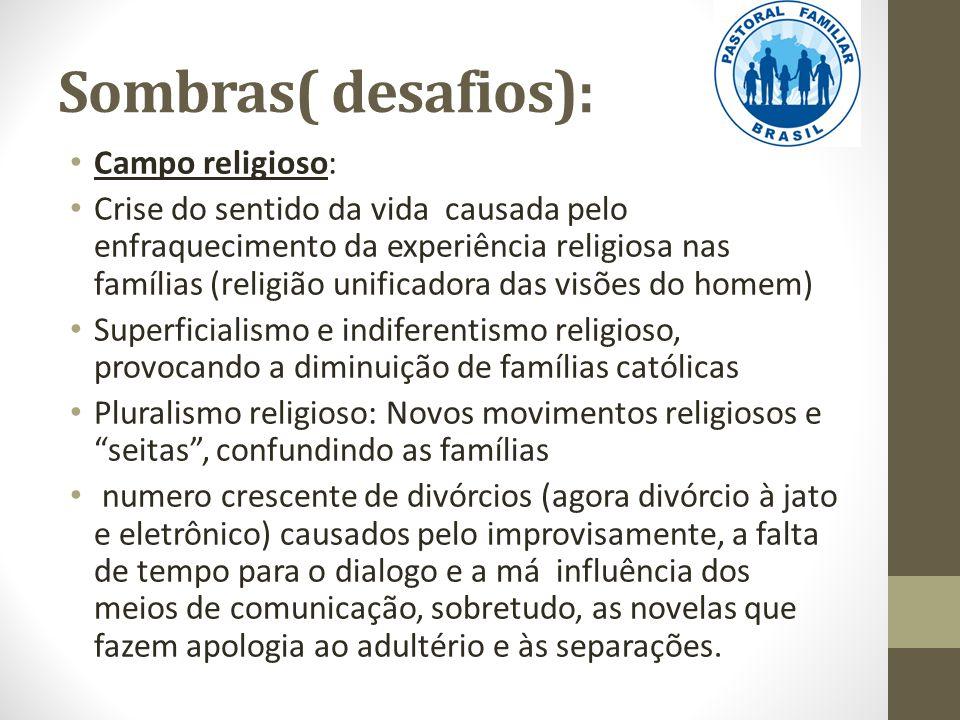 Sombras( desafios): Campo religioso: Crise do sentido da vida causada pelo enfraquecimento da experiência religiosa nas famílias (religião unificadora