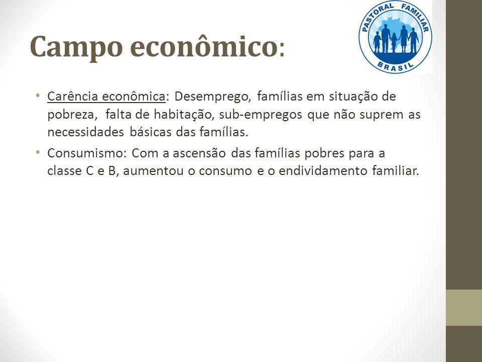 Campo econômico: Carência econômica: Desemprego, famílias em situação de pobreza, falta de habitação, sub-empregos que não suprem as necessidades bási