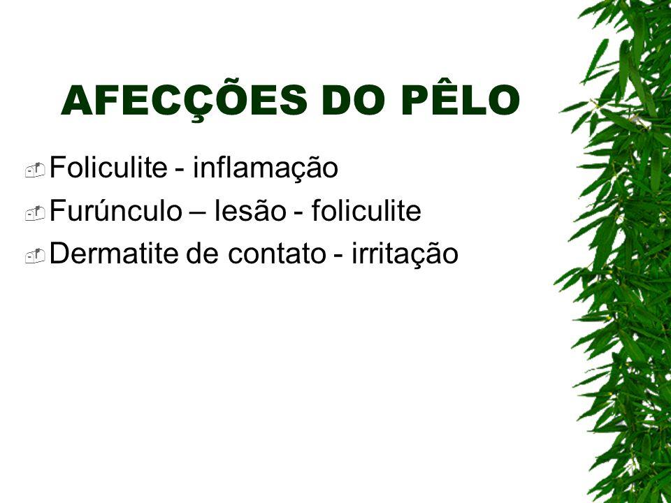AFECÇÕES DO PÊLO Foliculite - inflamação Furúnculo – lesão - foliculite Dermatite de contato - irritação