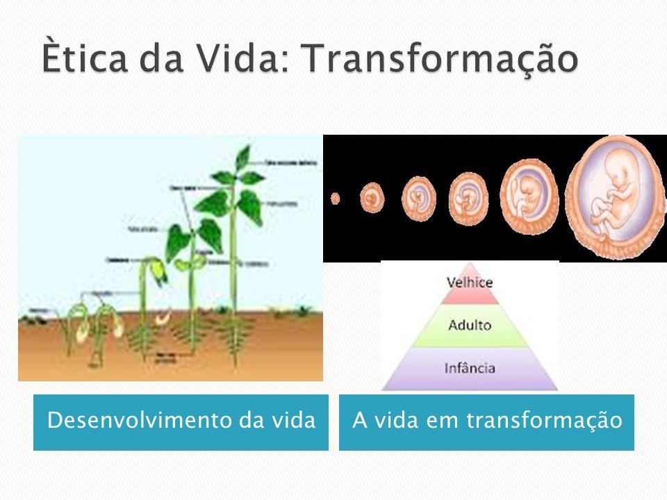 Desenvolvimento da vidaA vida em transformação