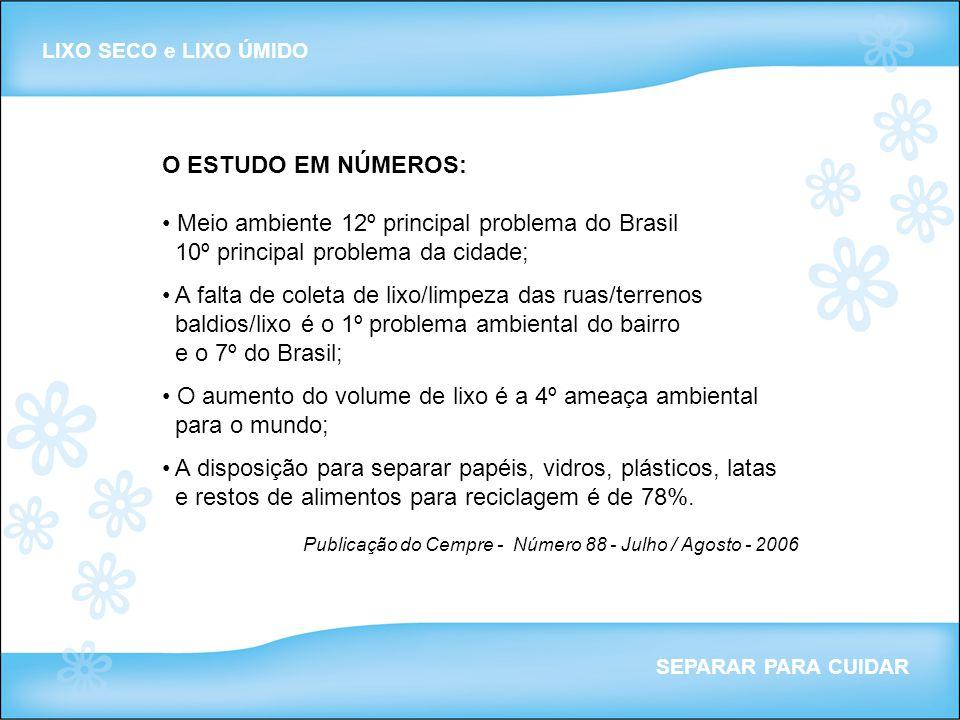 O ESTUDO EM NÚMEROS: Meio ambiente 12º principal problema do Brasil 10º principal problema da cidade; A falta de coleta de lixo/limpeza das ruas/terre