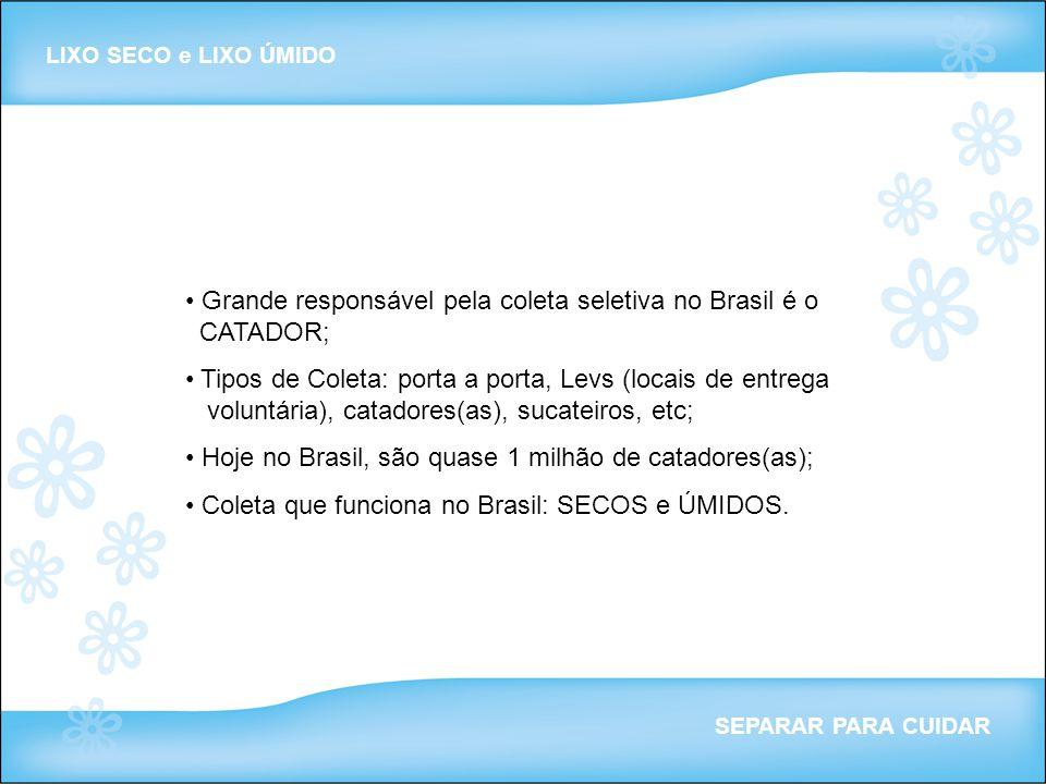 Grande responsável pela coleta seletiva no Brasil é o CATADOR; Tipos de Coleta: porta a porta, Levs (locais de entrega voluntária), catadores(as), suc