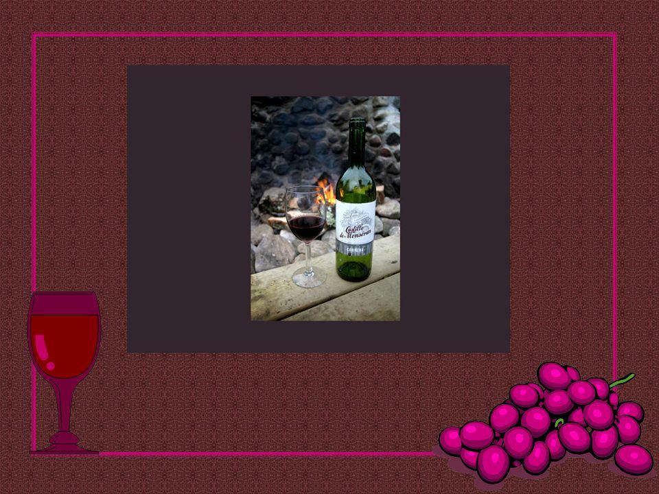 Existe mais filosofia e sabedoria numa garrafa de vinho do que em todos os livros! Louis Pasteur