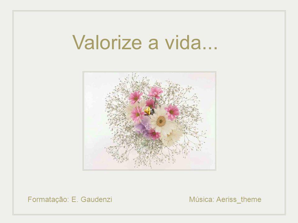 Valorize a vida... Formatação: E. Gaudenzi Música: Aeriss_theme