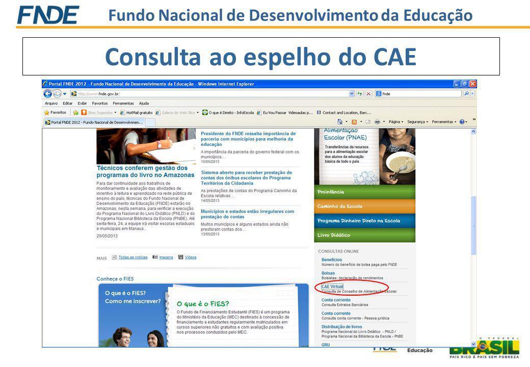 Fundo Nacional de Desenvolvimento da Educação Consulta ao espelho do CAE