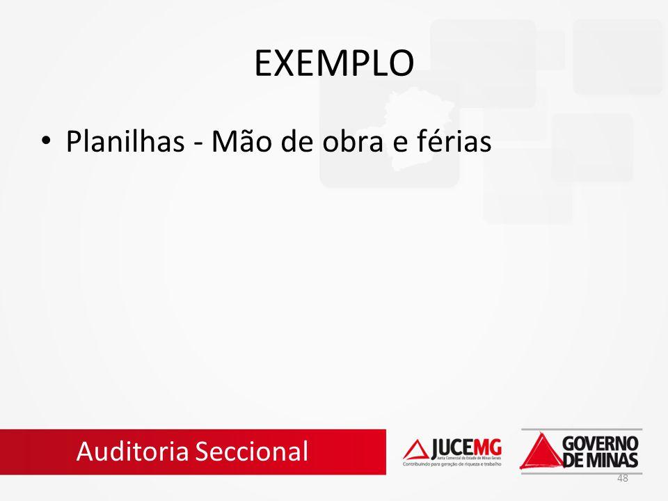 48 EXEMPLO Planilhas - Mão de obra e férias Auditoria Seccional