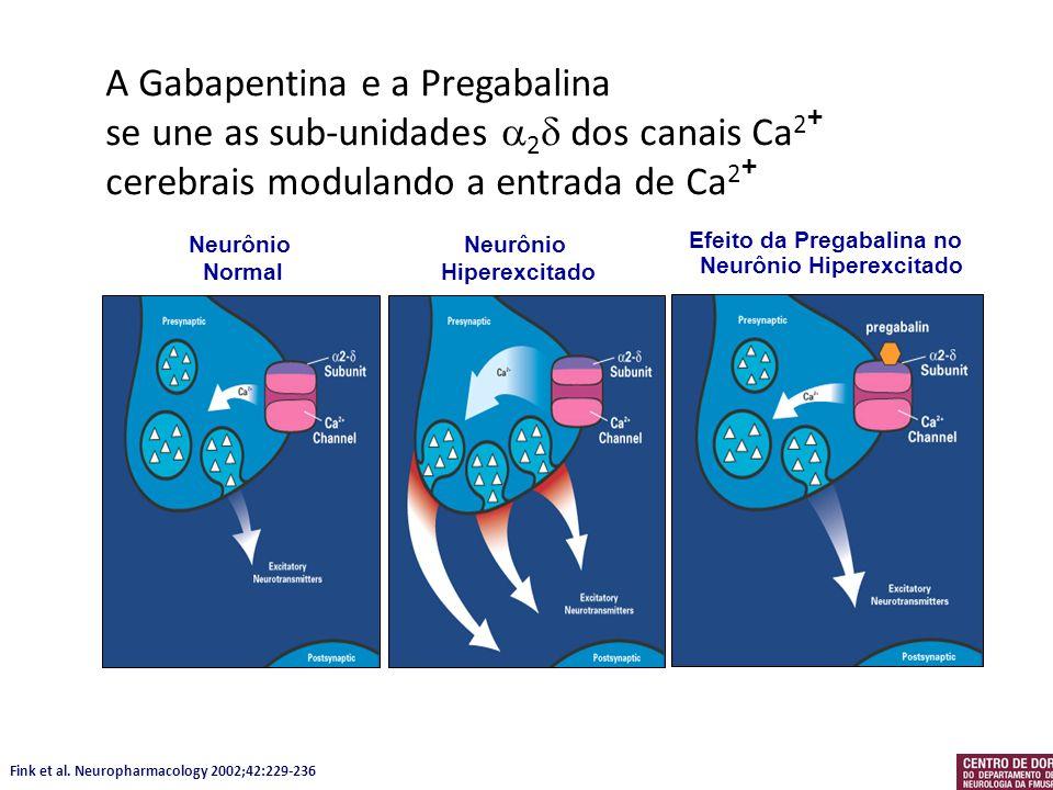 A Gabapentina e a Pregabalina se une as sub-unidades 2 dos canais Ca 2 + cerebrais modulando a entrada de Ca 2 + Fink et al. Neuropharmacology 2002;42