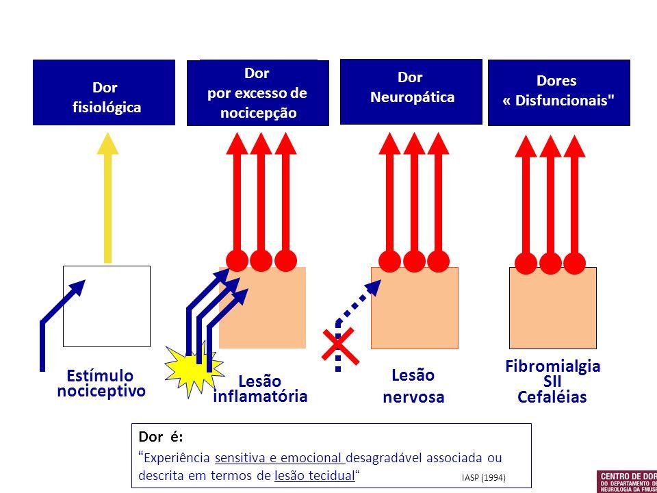 Estímulo nociceptivo Dor fisiológica Lesão inflamatória Dor por excesso de nocicepção Lesão nervosa Dor Neuropática Fibromialgia SII Cefaléias Dores «