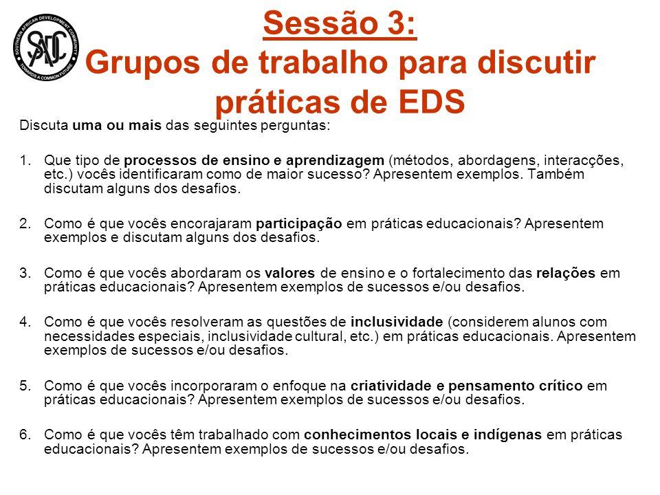 Sessão 3: Grupos de trabalho para discutir práticas de EDS Discuta uma ou mais das seguintes perguntas: 1.Que tipo de processos de ensino e aprendizagem (métodos, abordagens, interacções, etc.) vocês identificaram como de maior sucesso.
