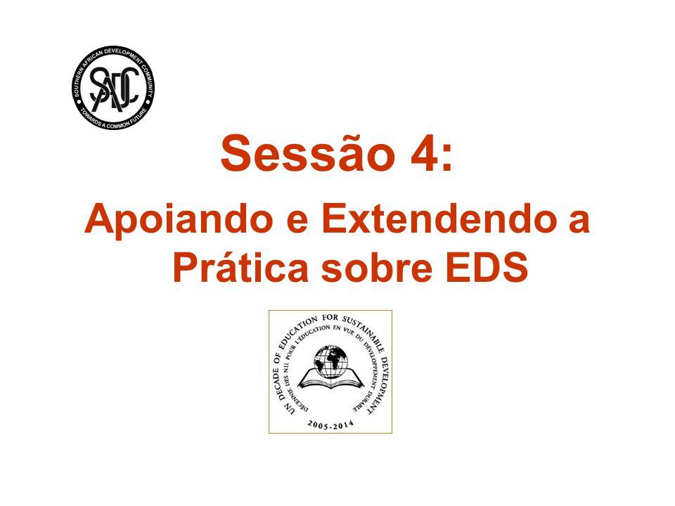 Sessão 4: Apoiando e Extendendo a Prática sobre EDS