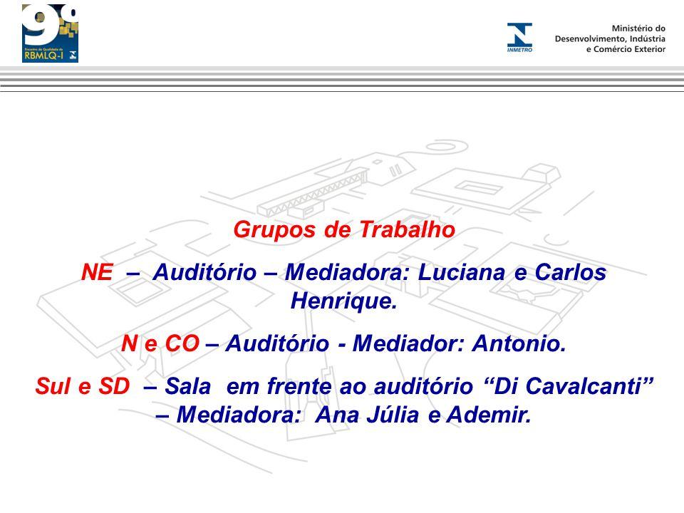 Grupos de Trabalho NE – Auditório – Mediadora: Luciana e Carlos Henrique.