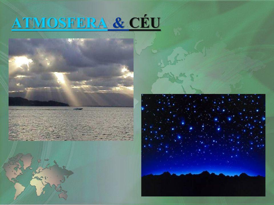 Característicos das médias latitudes; Apresentam as quatros estações definidas; Chuvas abundantes e bem distribuídas; Verões quentes e invernos frios; Elevada amplitude térmica anual.