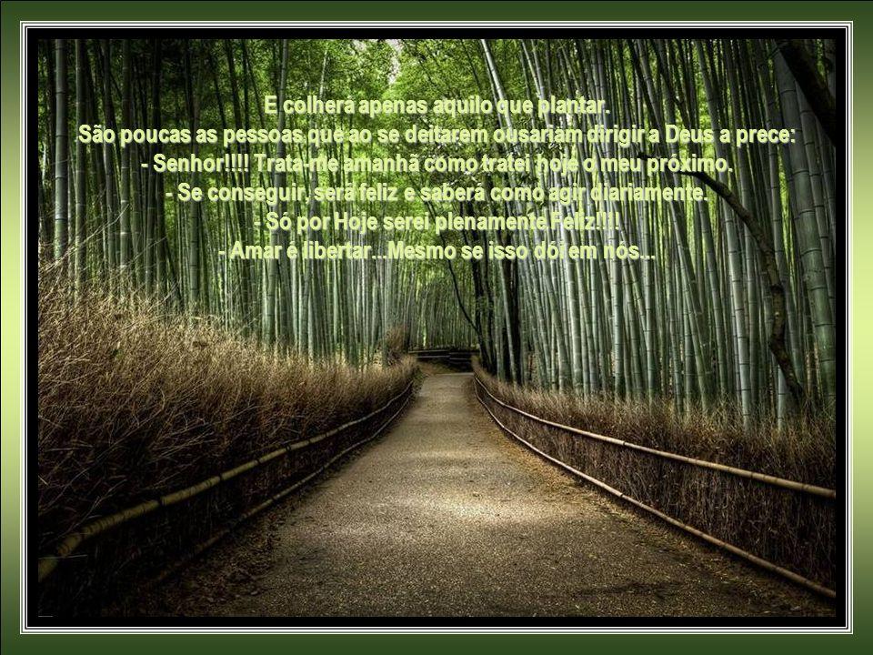 A VIDA NÃO COMPORTA ENSAIOS, HÁ APENAS UM ESPETÁCULO: a nossa própria vida. Breve, média ou longa... Cada um viverá apenas o papel que escolher...