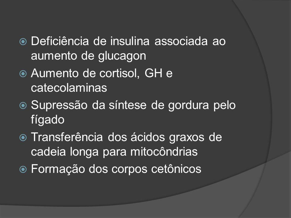 Deficiência de insulina associada ao aumento de glucagon Aumento de cortisol, GH e catecolaminas Supressão da síntese de gordura pelo fígado Transferência dos ácidos graxos de cadeia longa para mitocôndrias Formação dos corpos cetônicos