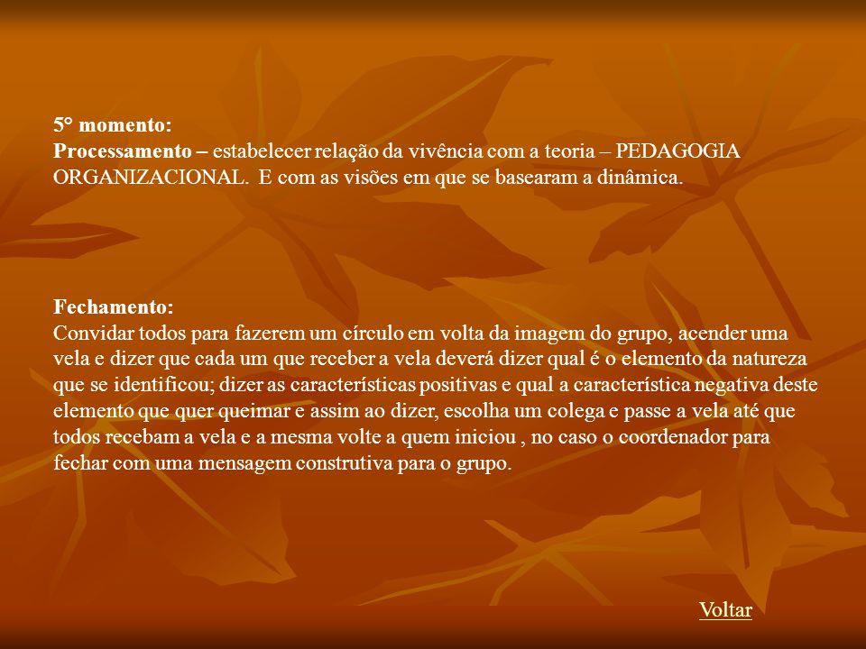 5° momento: Processamento – estabelecer relação da vivência com a teoria – PEDAGOGIA ORGANIZACIONAL. E com as visões em que se basearam a dinâmica. Fe