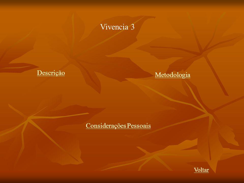 Vivencia 3 Descrição Metodologia Considerações Pessoais Voltar