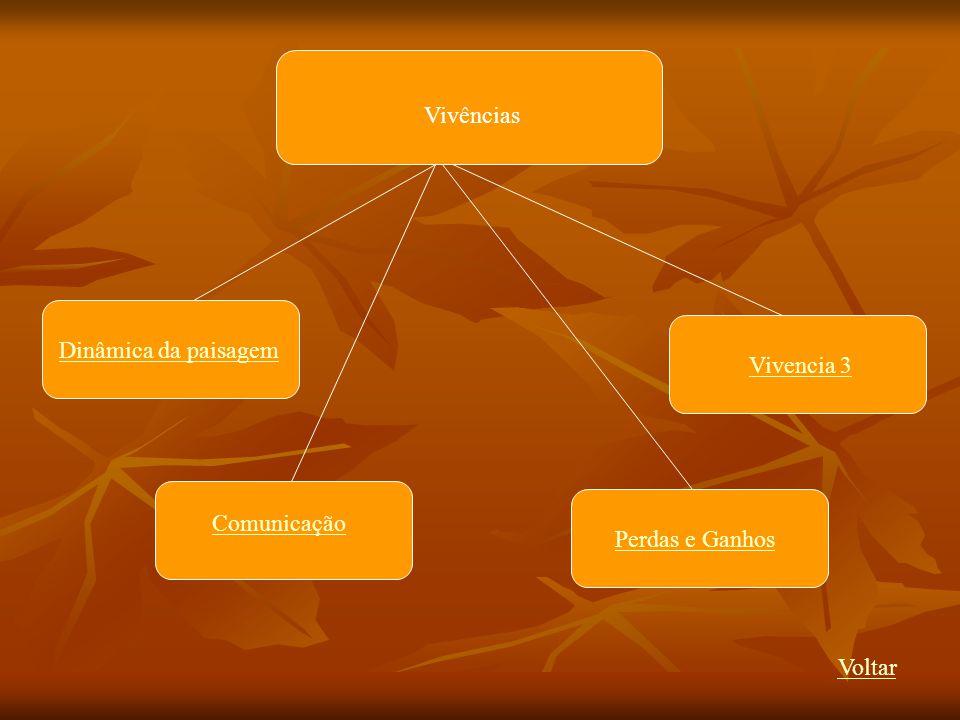 Vivências Voltar Dinâmica da paisagem Comunicação Vivencia 3 Perdas e Ganhos