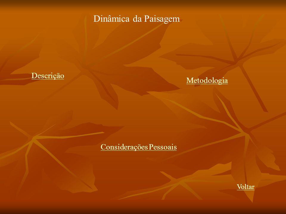 Dinâmica da Paisagem Descrição Metodologia Considerações Pessoais Voltar