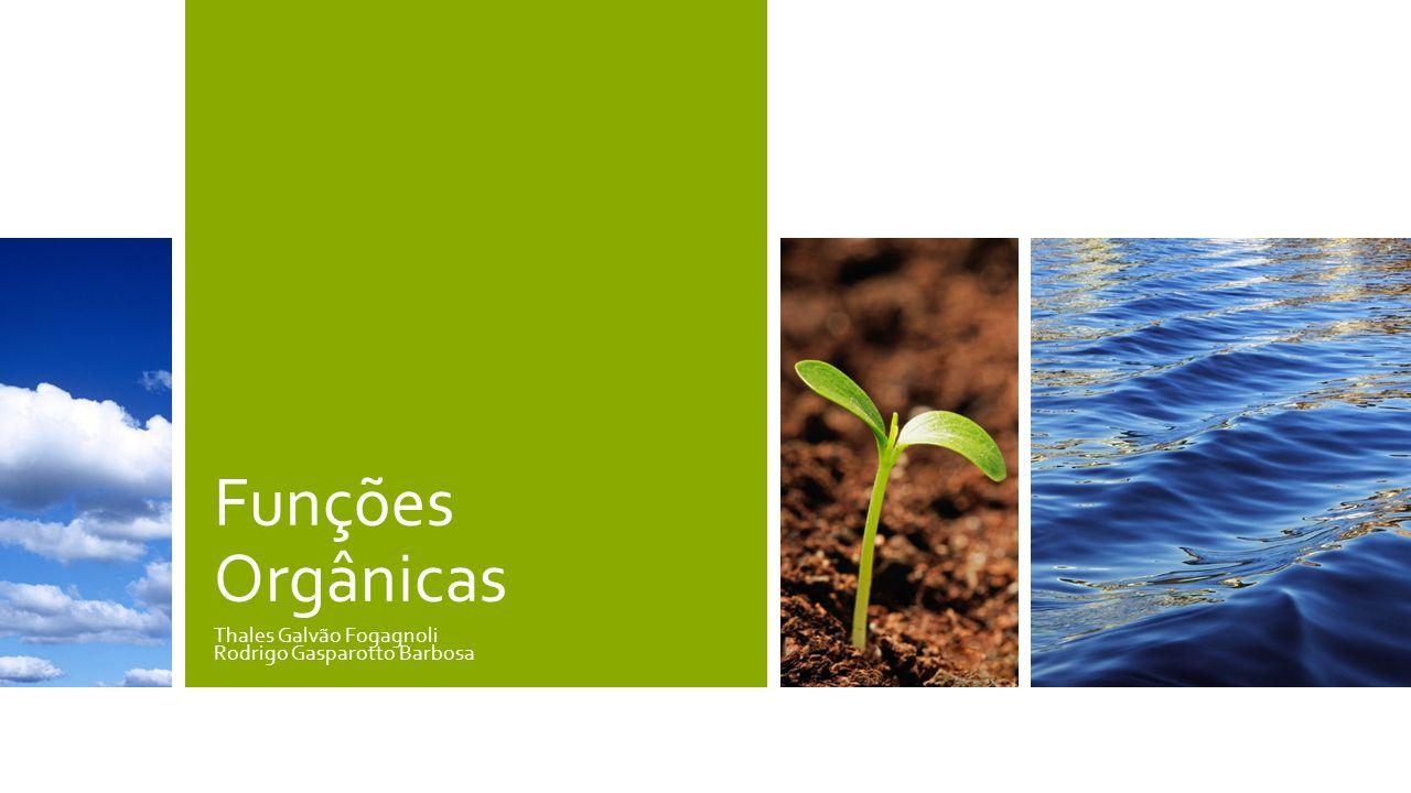 Funções Orgânicas Thales Galvão Fogagnoli Rodrigo Gasparotto Barbosa