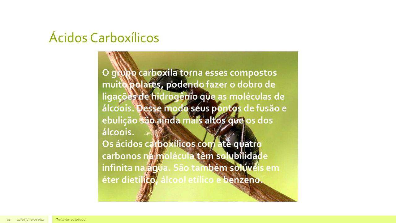 Ácidos Carboxílicos 22 de julho de 2012Texto do rodapé aqui14 O grupo carboxila torna esses compostos muito polares, podendo fazer o dobro de ligações