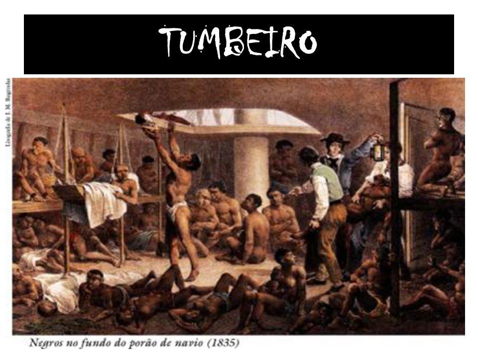 TUMBEIRO
