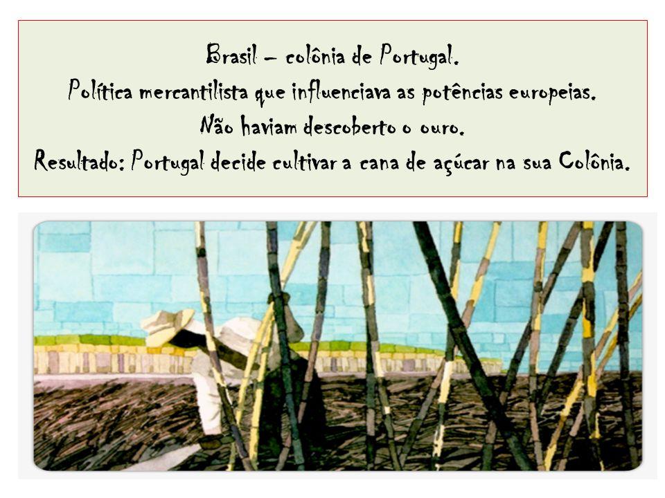 Brasil – colônia de Portugal. Política mercantilista que influenciava as potências europeias. Não haviam descoberto o ouro. Resultado: Portugal decide