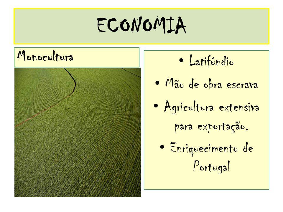 ECONOMIA Monocultura Latifúndio Mão de obra escrava Agricultura extensiva para exportação. Enriquecimento de Portugal