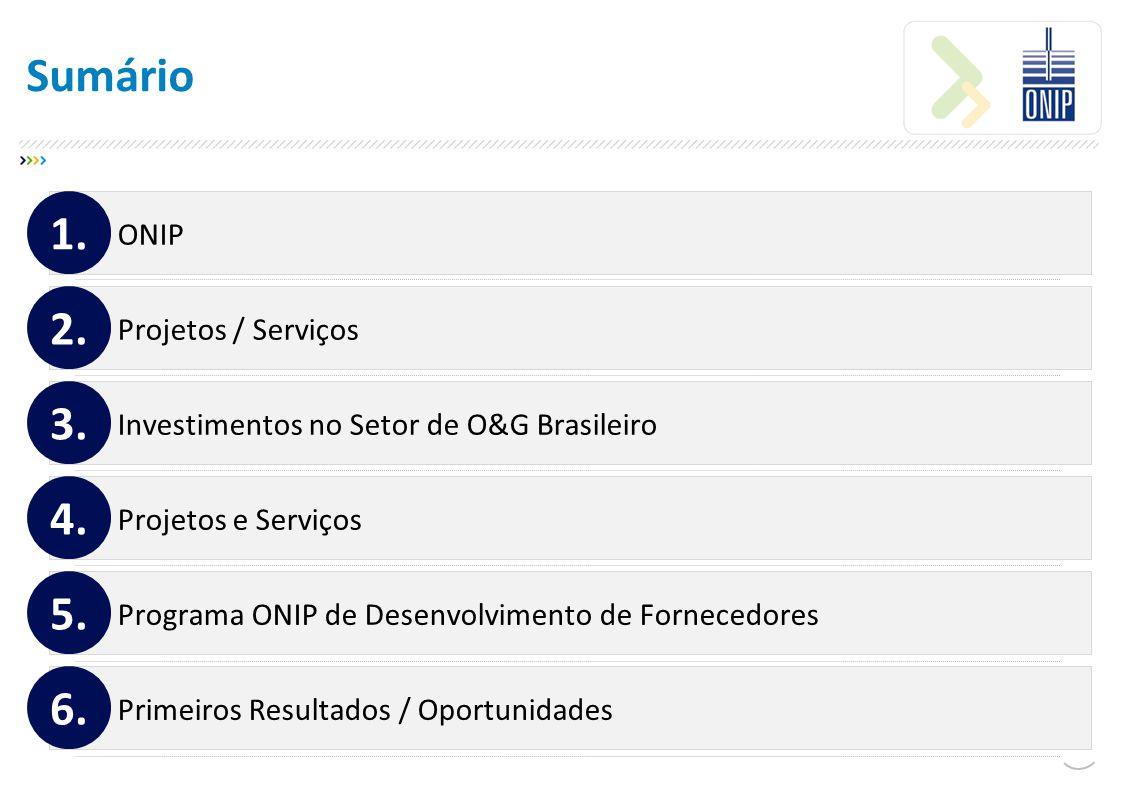 Programa ONIP de Desenvolvimento de Fornecedores Primeiros Resultados 5.