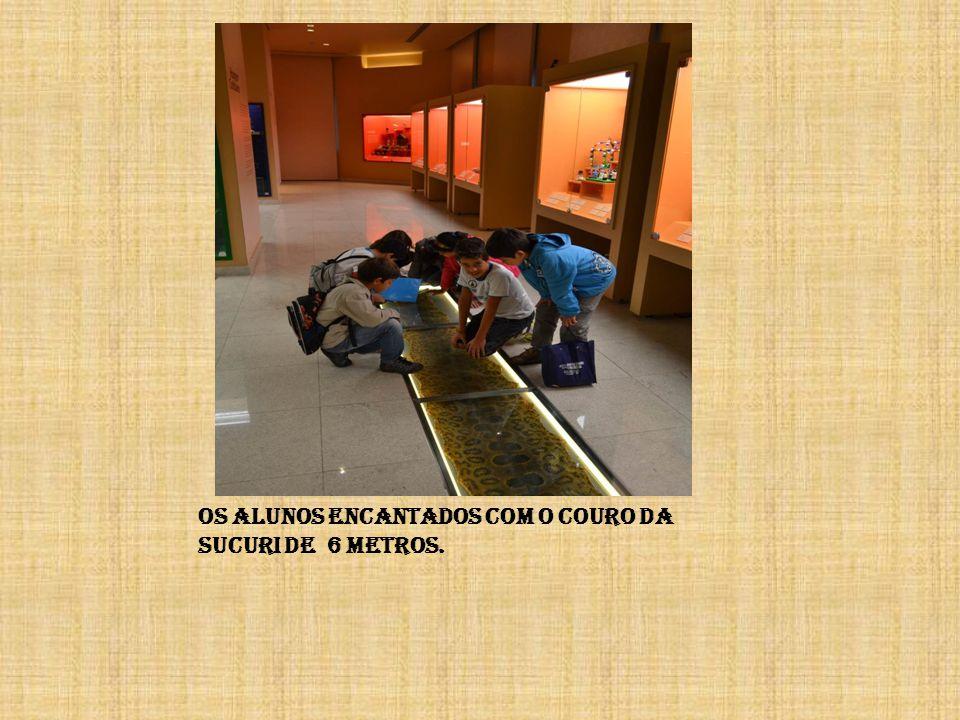 Os alunos encantados com o couro da sucuri de 6 metros.