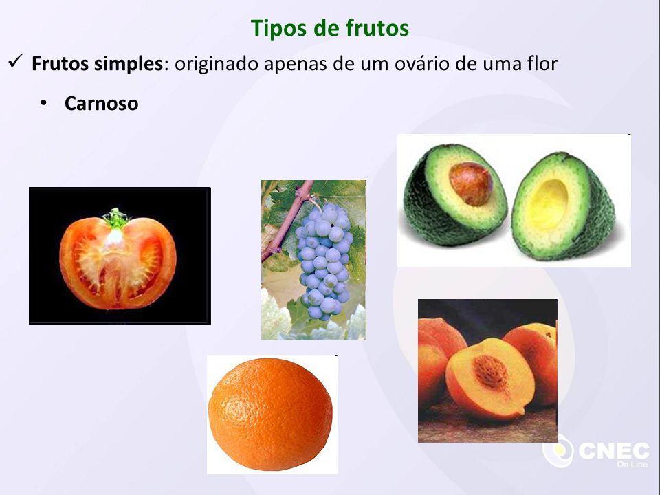 Tipos de frutos Frutos simples: originado apenas de um ovário de uma flor Carnoso