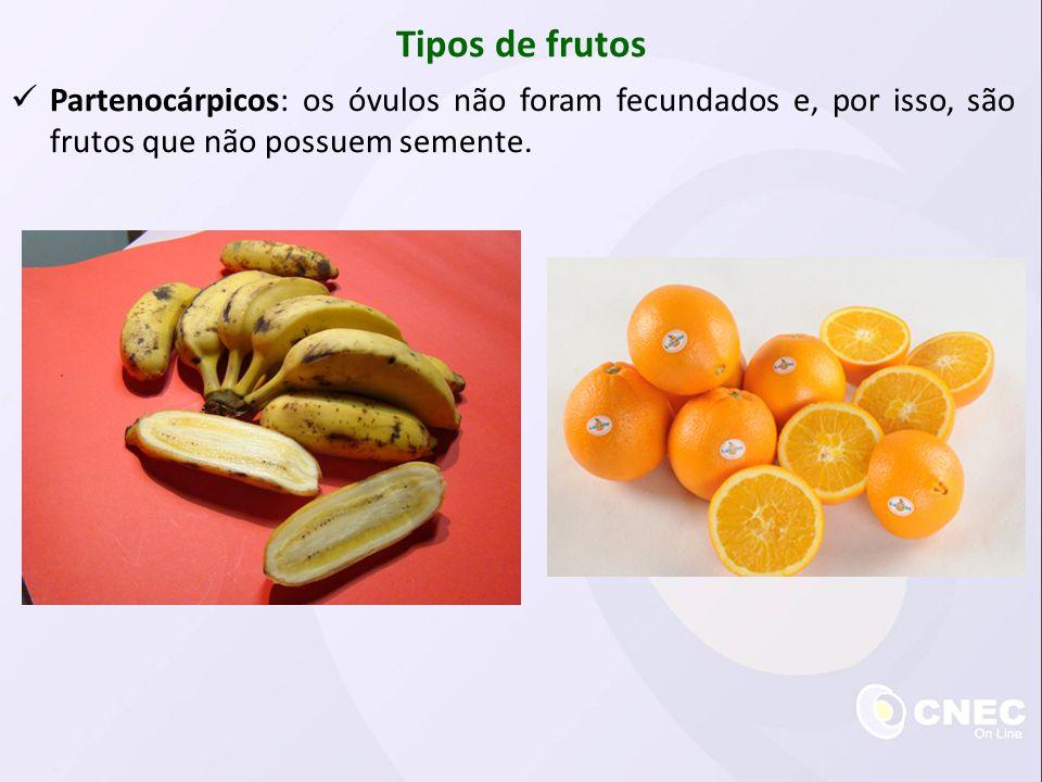 Tipos de frutos Partenocárpicos: os óvulos não foram fecundados e, por isso, são frutos que não possuem semente.