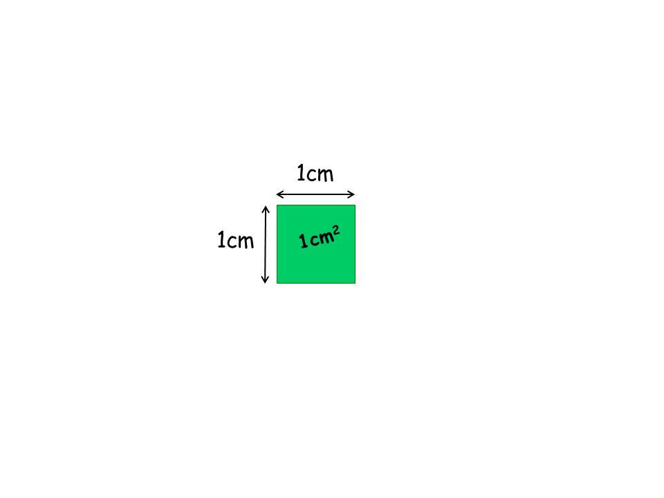 4cm 3cm