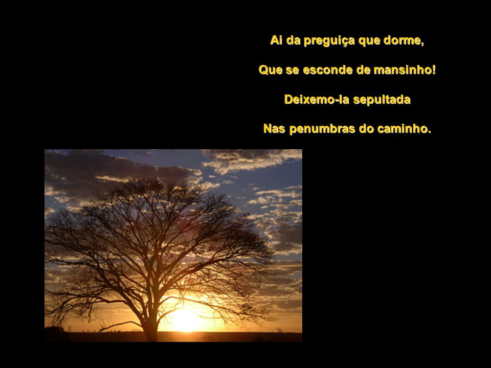 Feliz quem lhe segue a rota Desde a luz do amanhecer, Fazendo quanto possível Nos quadros do seu dever.