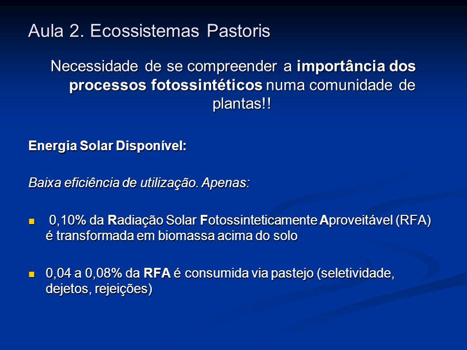 Aula 2. Ecossistemas Pastoris Necessidade de se compreender a importância dos processos fotossintéticos numa comunidade de plantas!! Energia Solar Dis