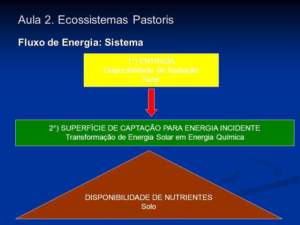 Aula 2. Ecossistemas Pastoris Fluxo de Energia: Sistema 1°) ENTRADA Disponibilidade de Radiação Solar 2°) SUPERFÍCIE DE CAPTAÇÃO PARA ENERGIA INCIDENT