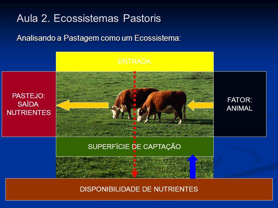 Aula 2. Ecossistemas Pastoris Analisando a Pastagem como um Ecossistema: ENTRADA DISPONIBILIDADE DE NUTRIENTES SUPERFÍCIE DE CAPTAÇÃO FATOR: ANIMAL PA