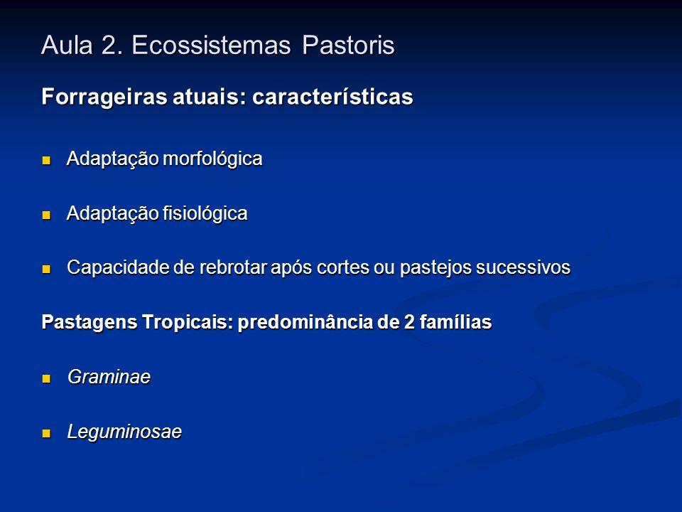 Aula 2. Ecossistemas Pastoris Forrageiras atuais: características Adaptação morfológica Adaptação morfológica Adaptação fisiológica Adaptação fisiológ