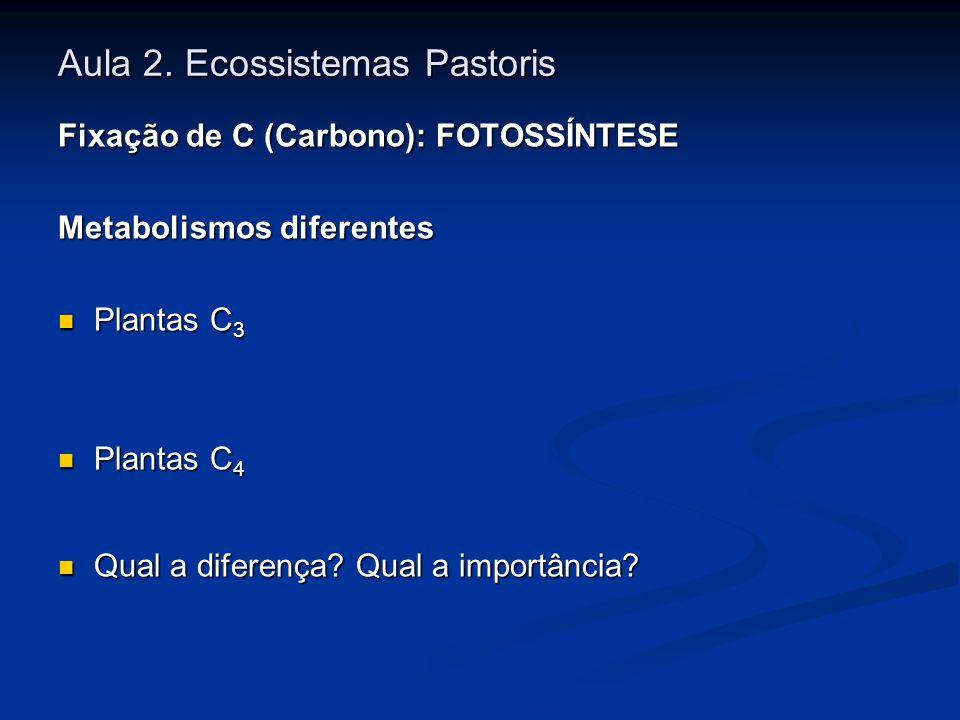 Aula 2. Ecossistemas Pastoris Fixação de C (Carbono): FOTOSSÍNTESE Metabolismos diferentes Plantas C 3 Plantas C 3 Plantas C 4 Plantas C 4 Qual a dife