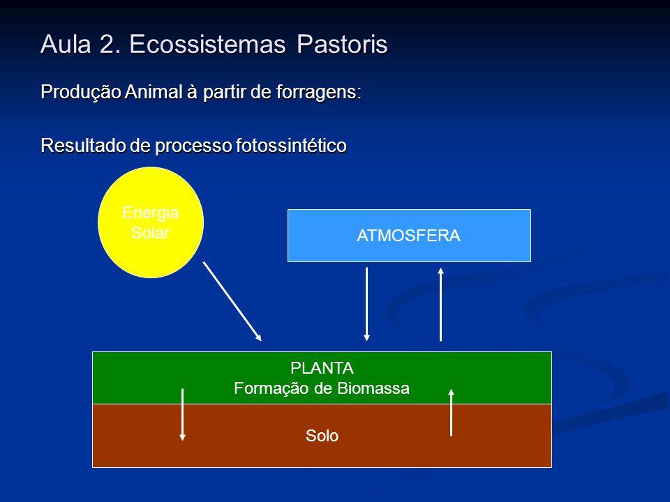 Aula 2. Ecossistemas Pastoris Produção Animal à partir de forragens: Resultado de processo fotossintético Energia Solar PLANTA Formação de Biomassa So