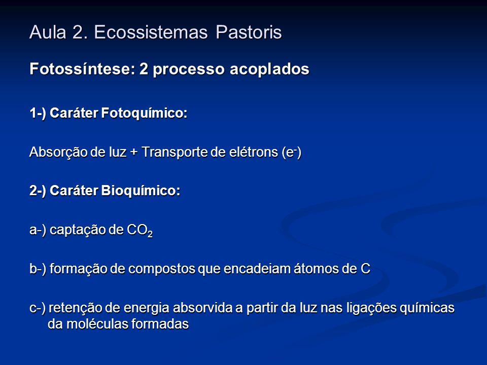 Aula 2. Ecossistemas Pastoris Fotossíntese: 2 processo acoplados 1-) Caráter Fotoquímico: Absorção de luz + Transporte de elétrons (e - ) 2-) Caráter