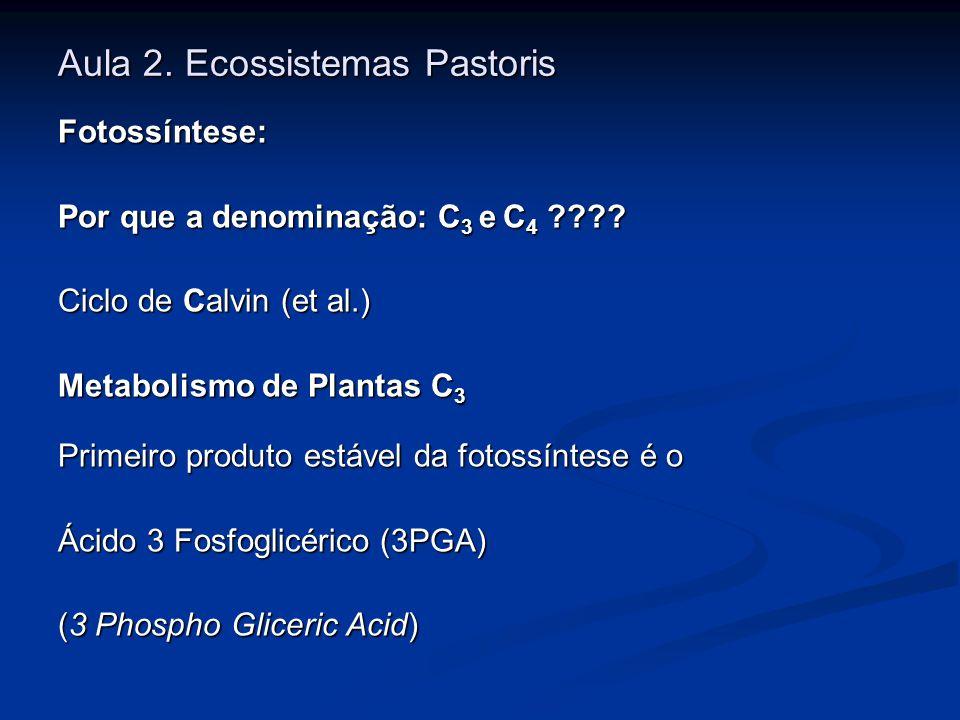 Aula 2. Ecossistemas Pastoris Fotossíntese: Por que a denominação: C 3 e C 4 ???? Ciclo de Calvin (et al.) Metabolismo de Plantas C 3 Primeiro produto