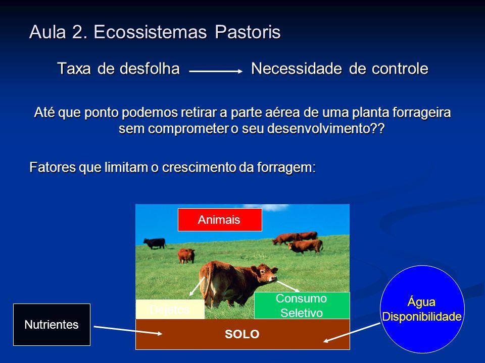 Aula 2. Ecossistemas Pastoris Taxa de desfolhaNecessidade de controle Até que ponto podemos retirar a parte aérea de uma planta forrageira sem comprom