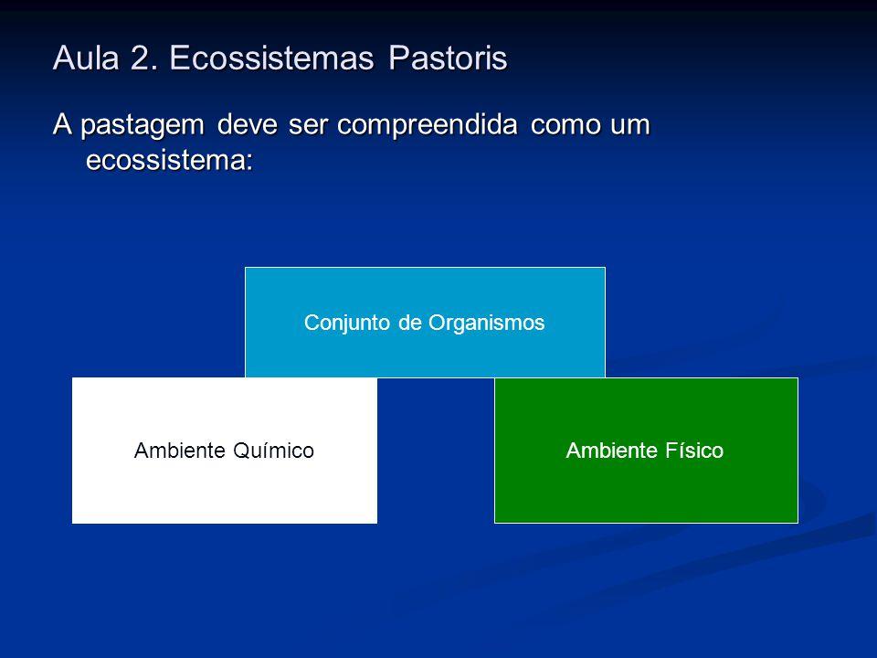 Aula 2. Ecossistemas Pastoris A pastagem deve ser compreendida como um ecossistema: Conjunto de Organismos Ambiente QuímicoAmbiente Físico