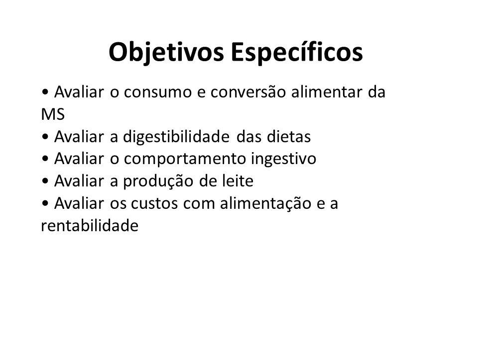Objetivos Específicos Avaliar o consumo e conversão alimentar da MS Avaliar a digestibilidade das dietas Avaliar o comportamento ingestivo Avaliar a p