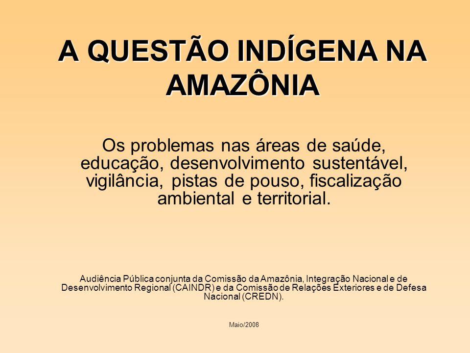 A QUESTÃO INDÍGENA NA AMAZÔNIA Os problemas nas áreas de saúde, educação, desenvolvimento sustentável, vigilância, pistas de pouso, fiscalização ambie
