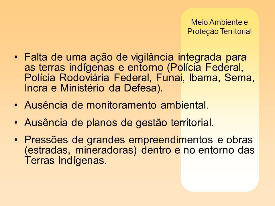 Meio Ambiente e Proteção Territorial Falta de uma ação de vigilância integrada para as terras indígenas e entorno (Polícia Federal, Polícia Rodoviária