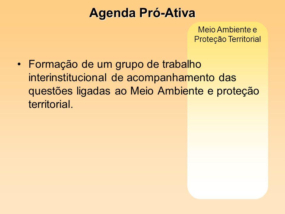 Meio Ambiente e Proteção Territorial Formação de um grupo de trabalho interinstitucional de acompanhamento das questões ligadas ao Meio Ambiente e pro