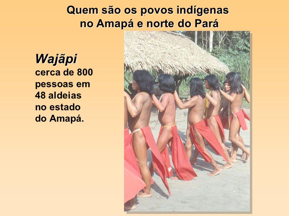 . Wajãpi Wajãpi cerca de 800 pessoas em 48 aldeias no estado do Amapá. Quem são os povos indígenas no Amapá e norte do Pará no Amapá e norte do Pará