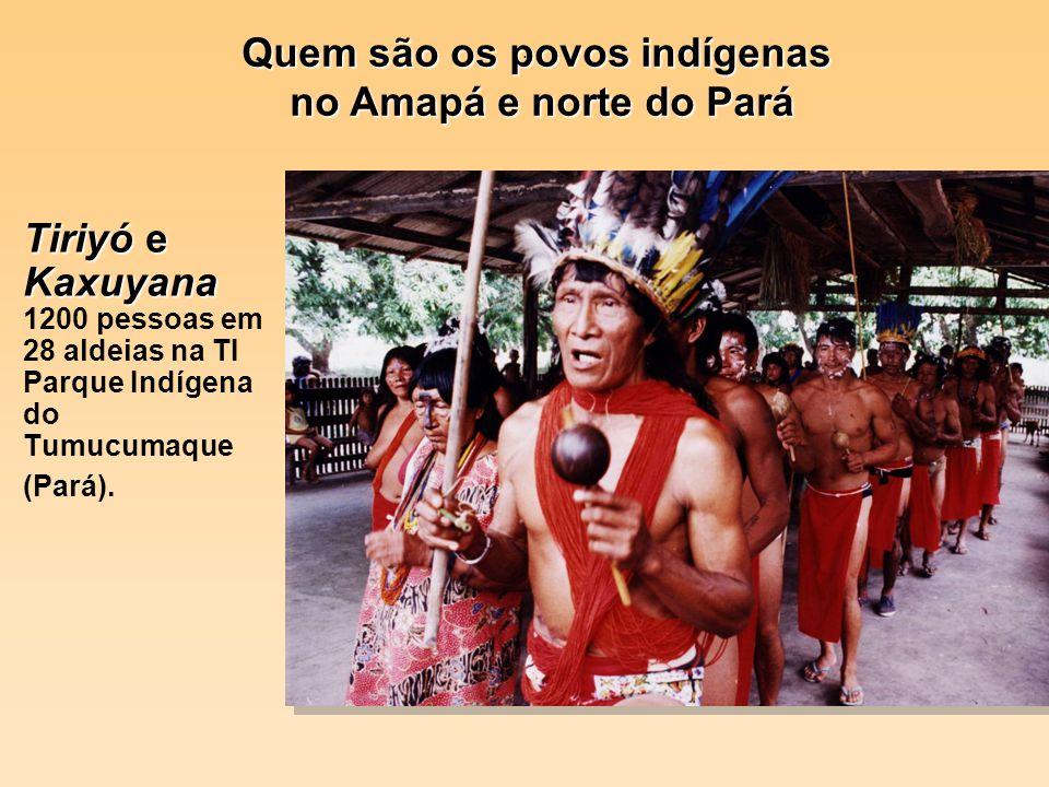 . Tiriyó e Kaxuyana Tiriyó e Kaxuyana 1200 pessoas em 28 aldeias na TI Parque Indígena do Tumucumaque (Pará). Quem são os povos indígenas no Amapá e n