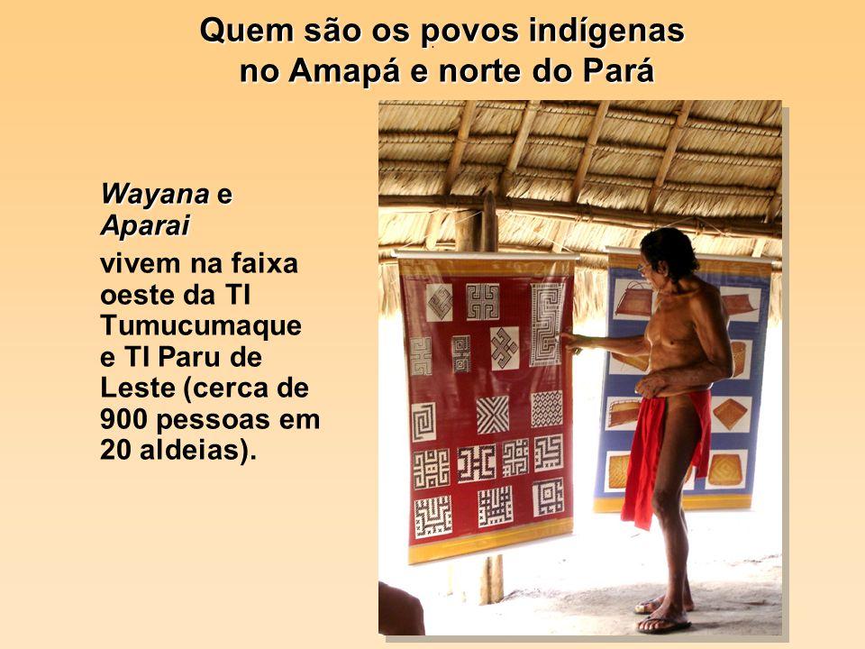 . Wayana e Aparai vivem na faixa oeste da TI Tumucumaque e TI Paru de Leste (cerca de 900 pessoas em 20 aldeias). Quem são os povos indígenas no Amapá